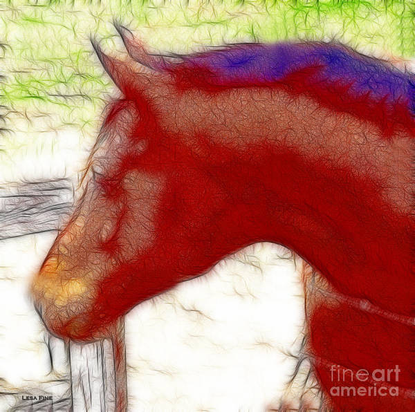 Photograph - Matt Quarter Horse Art by Lesa Fine