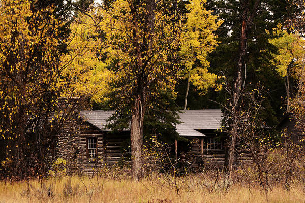 Photograph - Maud Noble Cabin II by Craig Ratcliffe