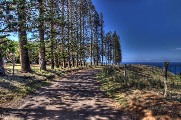 Photograph - Maui Back Roads by John King