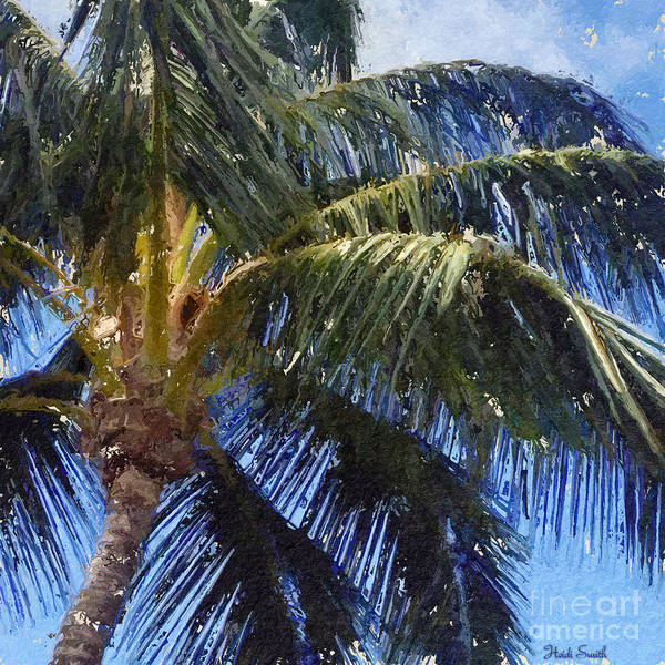Wall Art - Photograph - Maui Breezes  by Heidi Smith