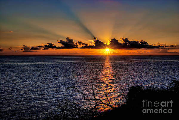 Maui Color Photograph By Kimmi Ducker