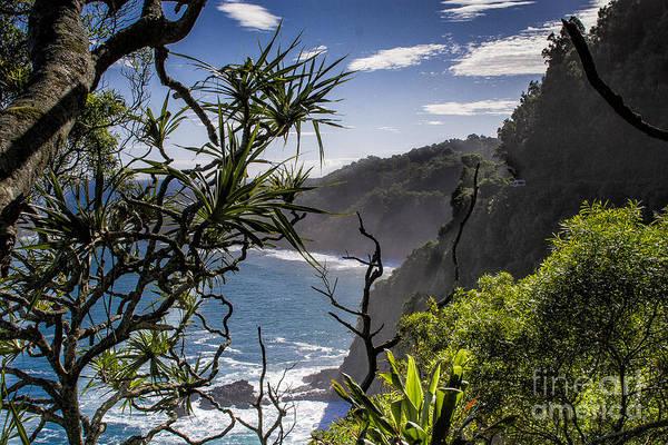 Photograph - Maui North Shore by Ronald Lutz