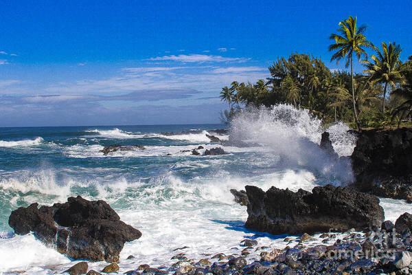 Photograph - Maui Shoreline by Ronald Lutz