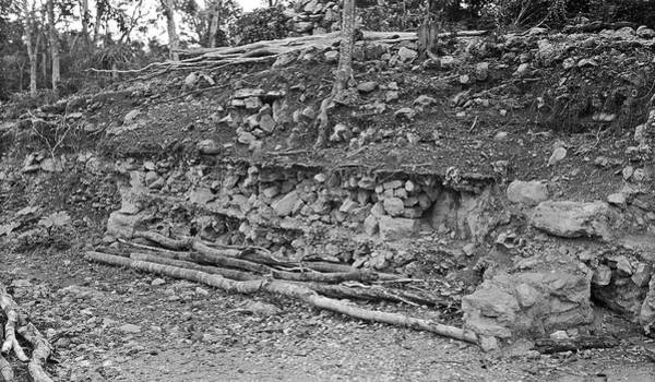 Mesoamerican Photograph - Mayan Excavation Site by American Philosophical Society