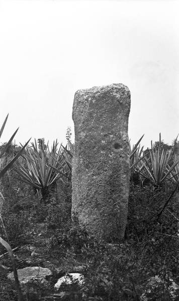 Mesoamerican Photograph - Mayan Stele by American Philosophical Society