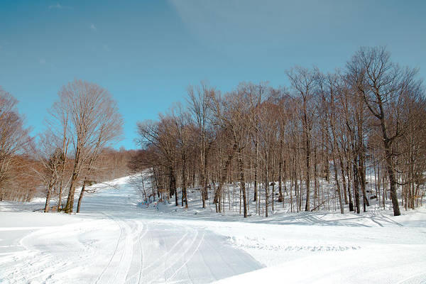Photograph - Mccauley Mountain Ski Area Vii- Old Forge New York by David Patterson