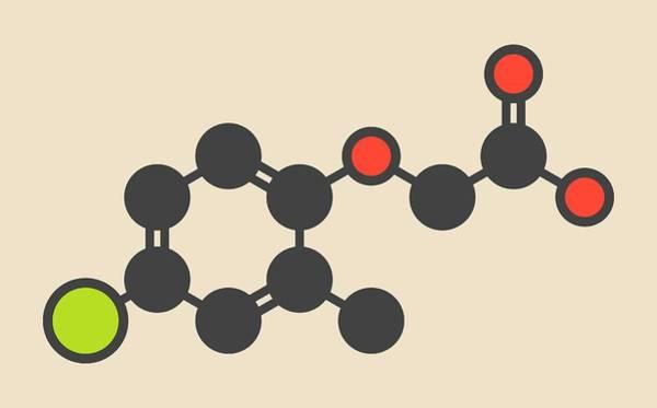 Mcpa Herbicide Molecule Art Print