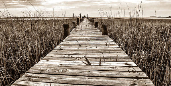Photograph - Mcteer Dock - Sepia by Scott Hansen