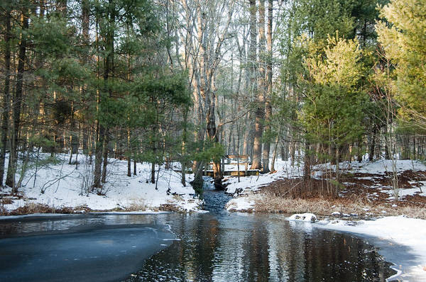 Meadowbrook Photograph - Meadow Brook Pond 1 by Steven Natanson