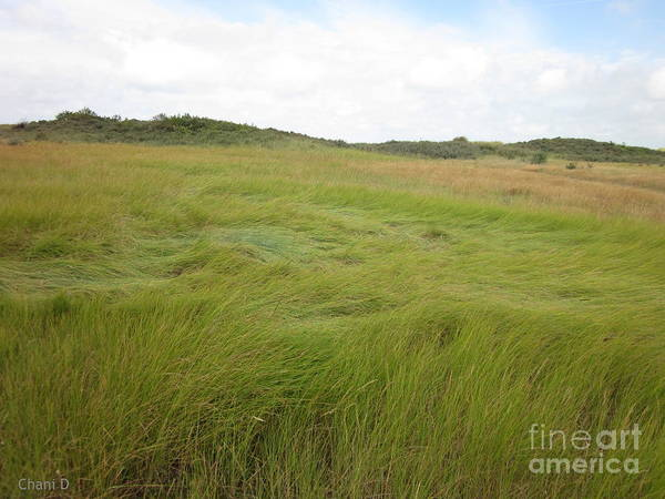 Photograph - Meadow Near Calais by Chani Demuijlder