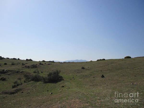 Photograph - Meadow Near Mijas by Chani Demuijlder