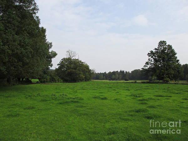 Photograph - Meadow Near Munich by Chani Demuijlder