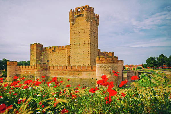 Castillo Wall Art - Photograph - Medina Del Campo, Valladolid Province by Panoramic Images