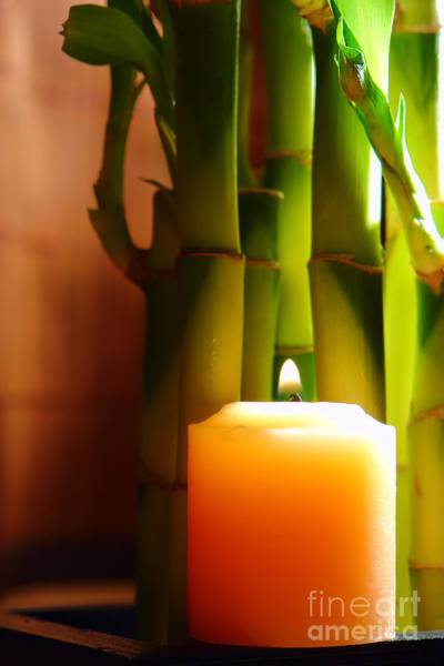 Wall Art - Photograph - Meditation Candle And Bamboo by Olivier Le Queinec