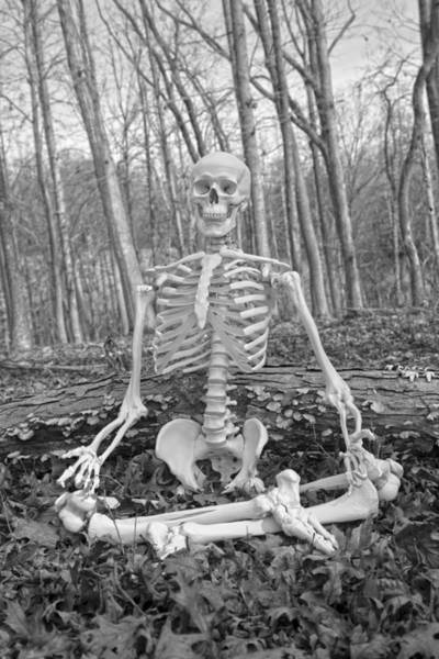 Skeletal System Photograph - Meditative Moods Don't Take Anything For Granted by Betsy Knapp