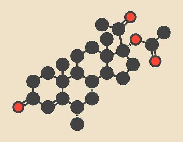 Transgender Photograph - Medroxyprogesterone Acetate Molecule by Molekuul