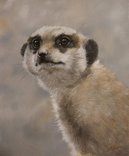Painting - Meerkat Portrait I by John Silver