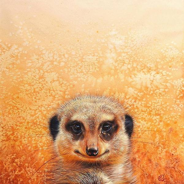 Drawing - Meerkat's Smile by Elena Kolotusha