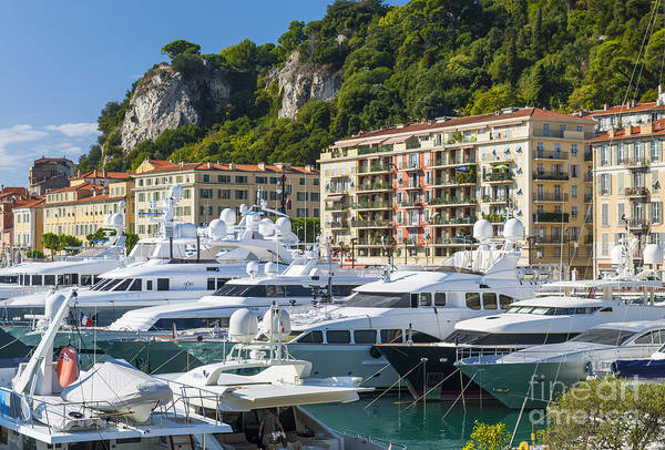 Photograph - Mega Yachts In Port Of Nice France by Elena Elisseeva