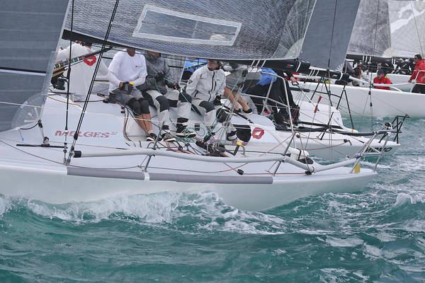 Photograph - Melges Key West Start by Steven Lapkin