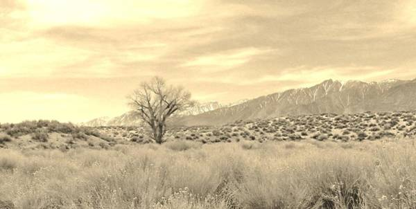 Bishop Hill Photograph - Mellow by Marilyn Diaz