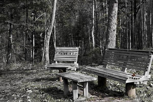 Photograph - Melodie's Secret Garden by David Yocum