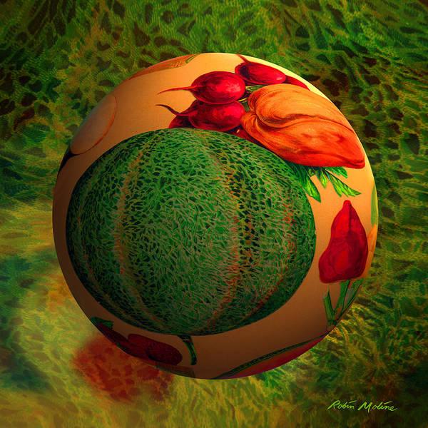 Ball Digital Art - Melon Ball  by Robin Moline
