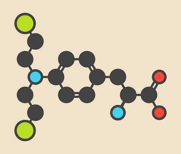 Mustard Photograph - Melphalan Cancer Drug Molecule by Molekuul