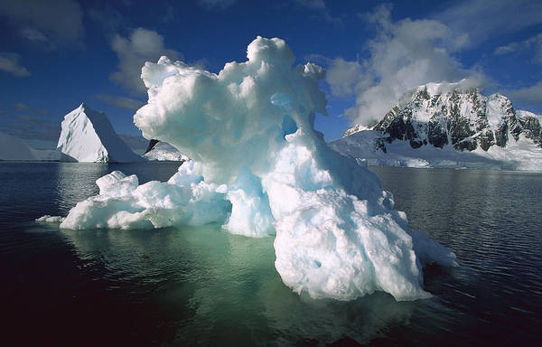 Photograph - Melting Iceberg Lemaire Channel by Colin Monteath