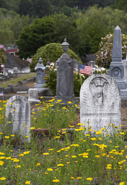 Photograph - Memorial Day In Gravestones And Daisies by Lorraine Devon Wilke