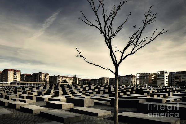 Holocaust Photograph - Memorial Landscape by Michel Verhoef