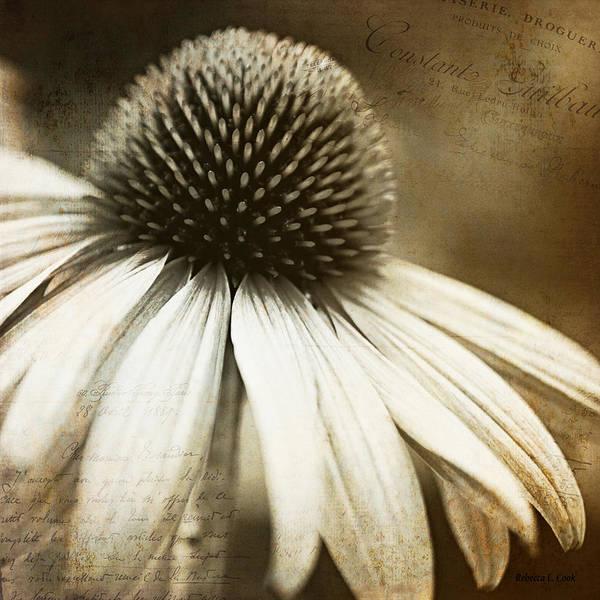 Photograph - Memories by Bellesouth Studio