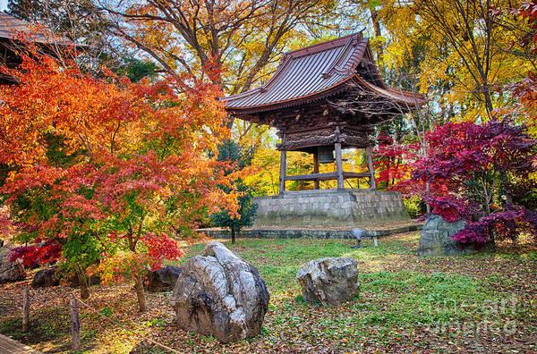 Photograph - Memories Of Autumn-4 by Tad Kanazaki