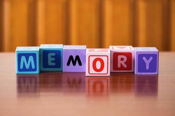Neurology Photograph - Memory by Cristina Pedrazzini/science Photo Library