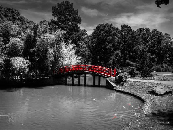 Photograph - Memphis Botanic Garden 001 Ck by Lance Vaughn