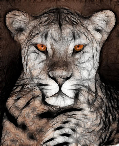 Don Johnson Photograph - Memphis Leopard Artwork by Don Johnson