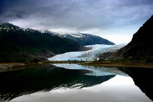 Photograph - Mendenhall Glacier by Heather Applegate