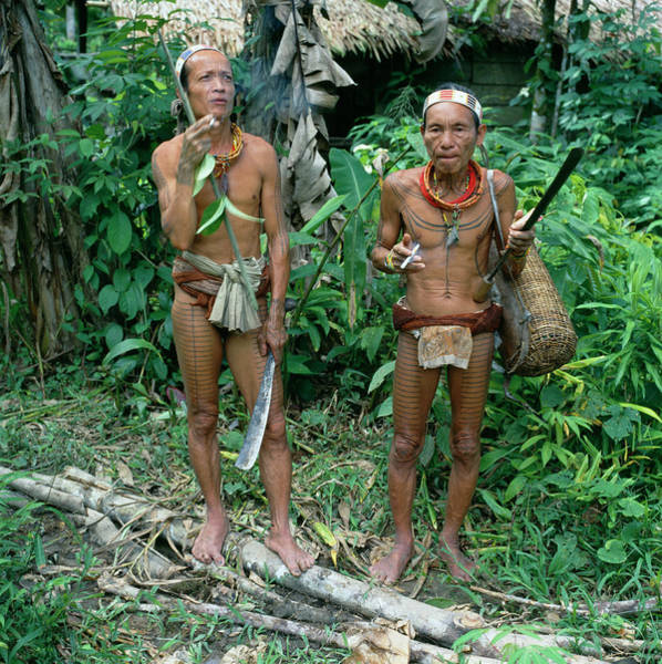 Indonesian Culture Photograph - Mentawai Tribesmen by Mark De Fraeye/science Photo Library