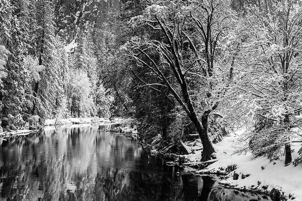 Untamed Wall Art - Photograph - Merced River And Cathedral Rock by Russ Bishop