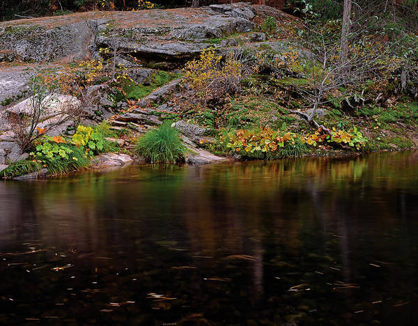 Photograph - Merced River South Fork by Paul Breitkreuz
