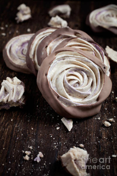 Wall Art - Photograph - Meringue Rose by Kati Finell