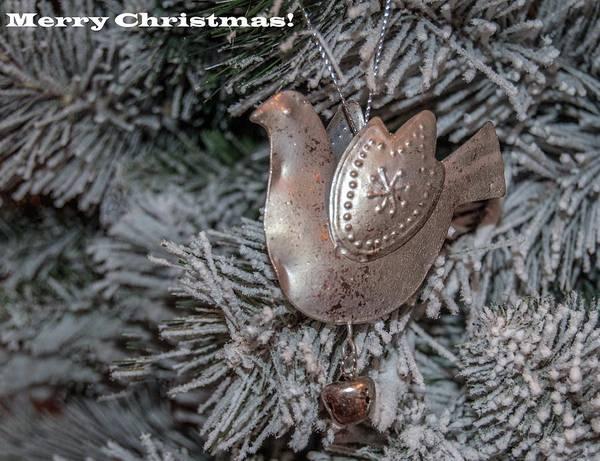 Photograph - Merry Christmas 1 by Tam Ryan