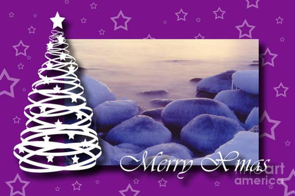 Photograph - Merry Xmas by Randi Grace Nilsberg