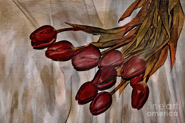 Tulips Mixed Media - Mes Tulipes by Aimelle