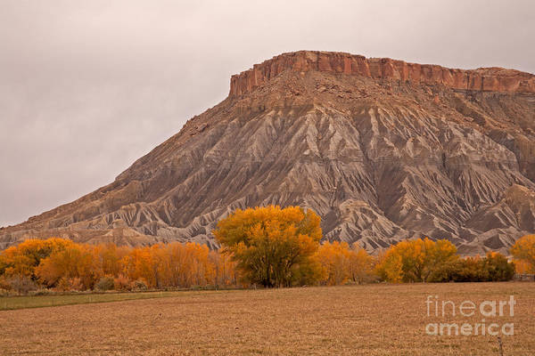 Photograph - Mesa by Fred Stearns