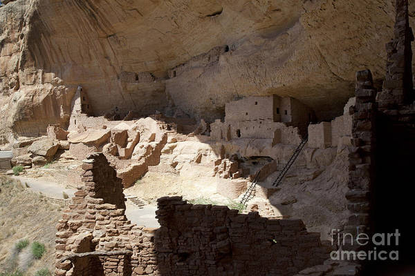 Photograph - Mesa Verde by Jim West