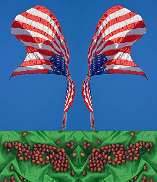 Photograph - Mescal Beans Fluttering Flags 2013 by James Warren