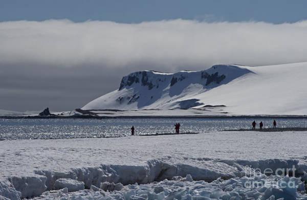 Wall Art - Photograph - Mesmerizing Antarctica... by Nina Stavlund