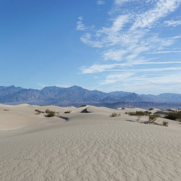 Great Sand Dunes National Park Photograph - Mesquite Flat Sand Dunes, Death Valley by Tuan Tran
