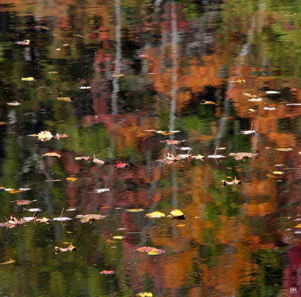 Photograph - Messalonskee Reflection 1 by John Meader